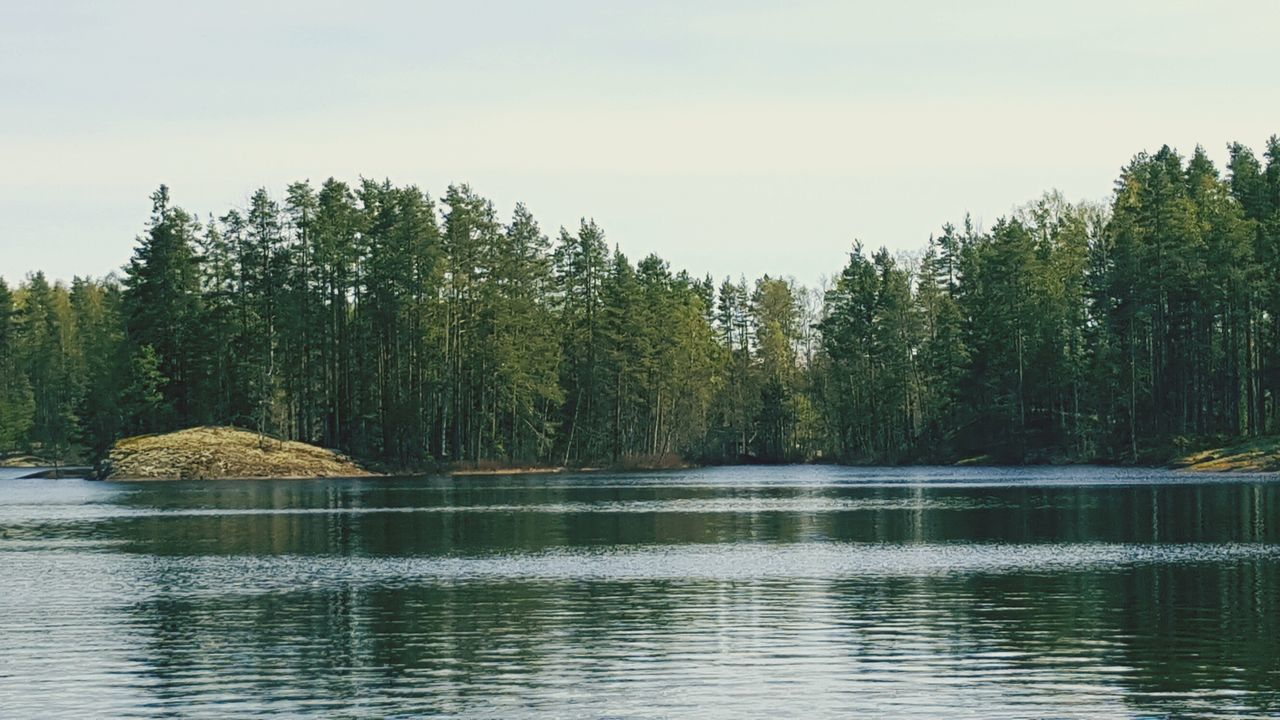 Finland Lake Finnish Lake Forest Trees Water Calm Water Calm Peace And Quiet Home Bliss
