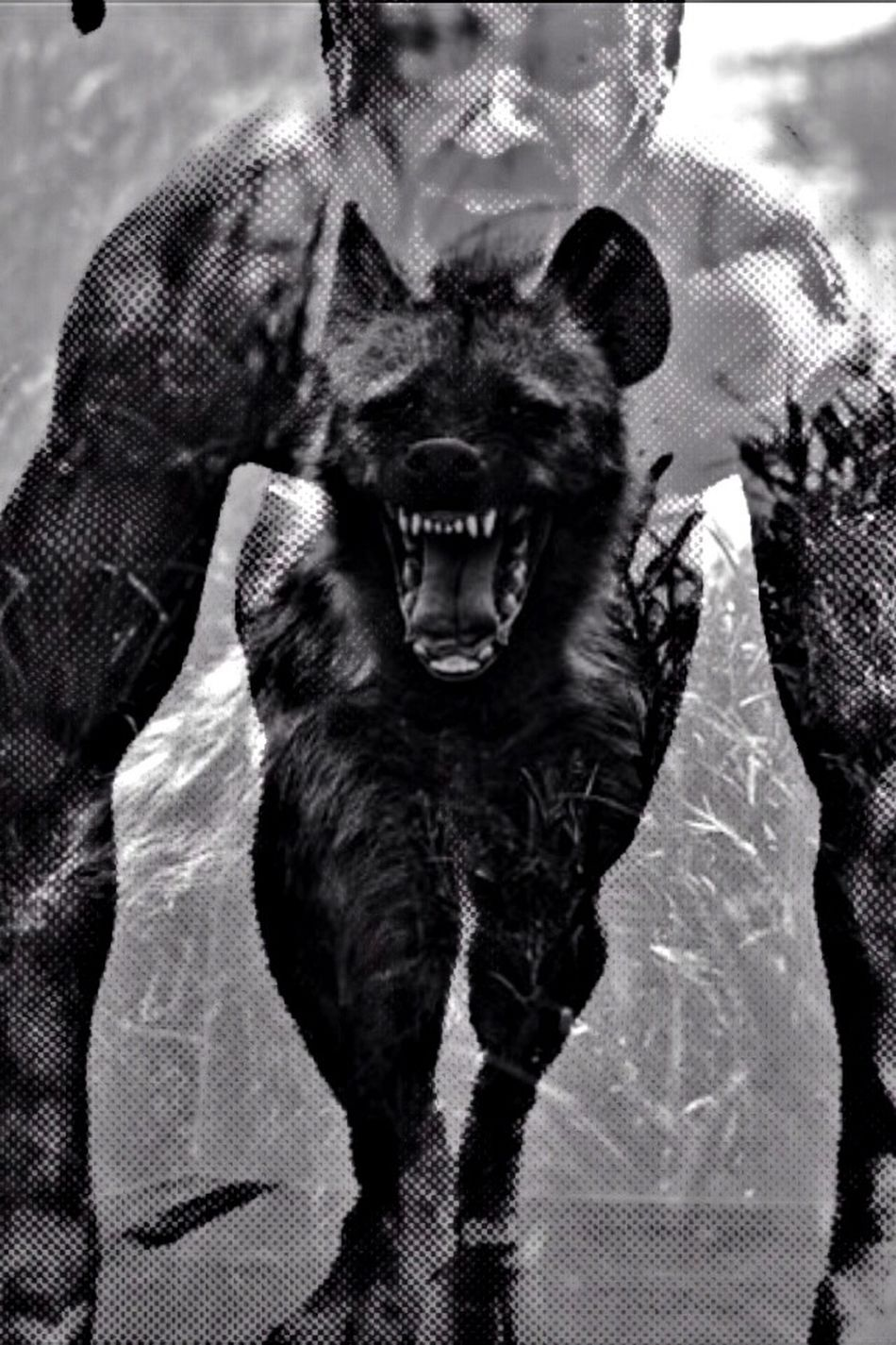 The Beast In You !