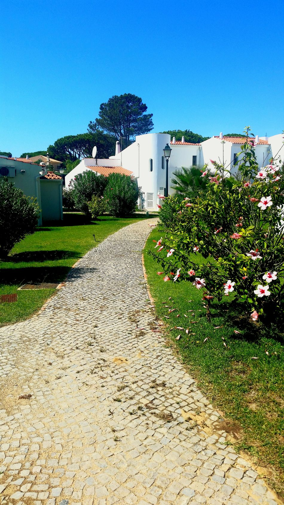 Pathway to our Villa in portugal Pretty Sun