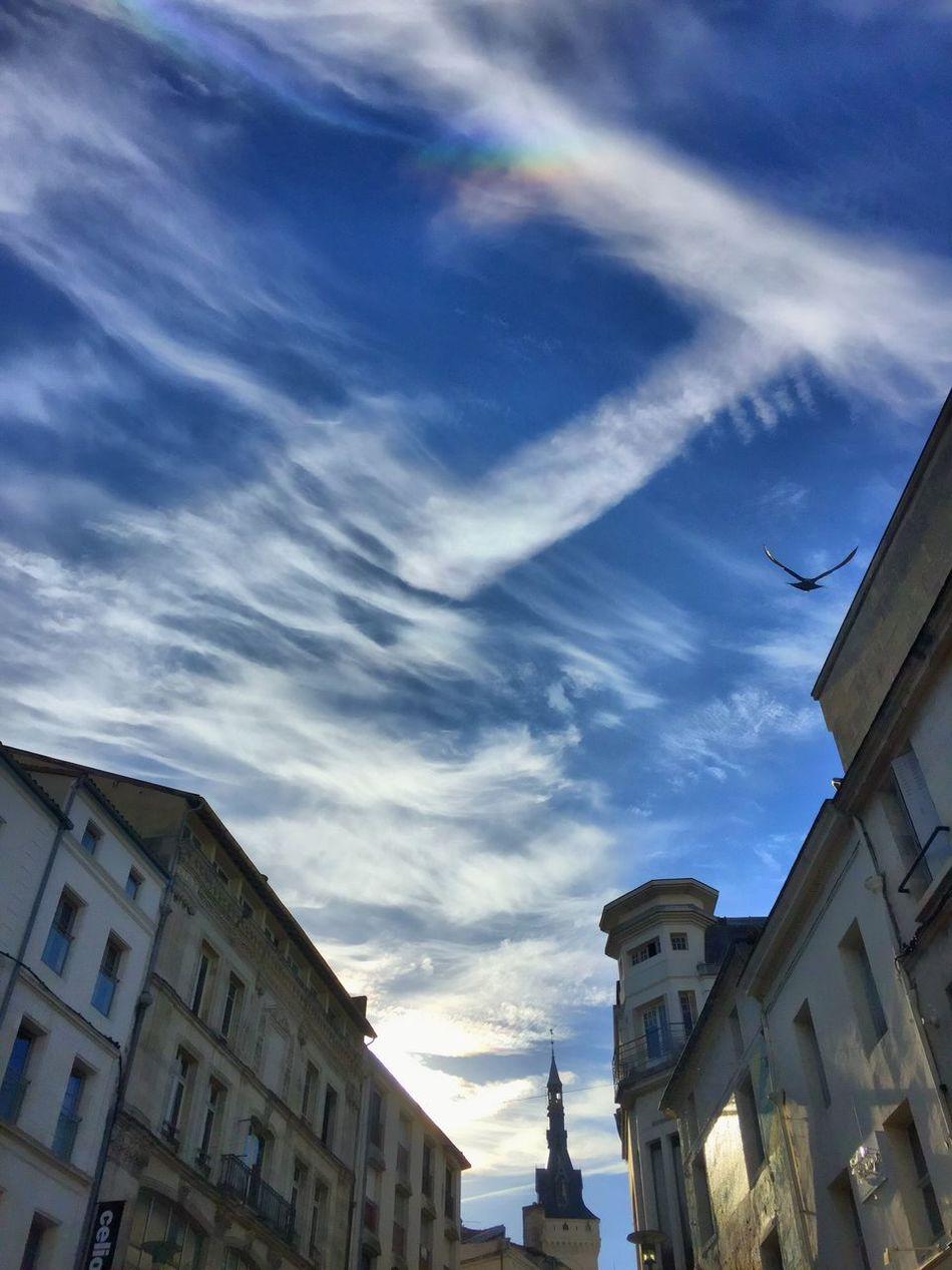 Arc-en-ciel  Arc En Ciel Ciel En Couleurs CIELFIE City Ville Sky Ciel Architecture Cloud - Sky Skyfie Ciel Et Nuages Street Rue Bird Oiseau