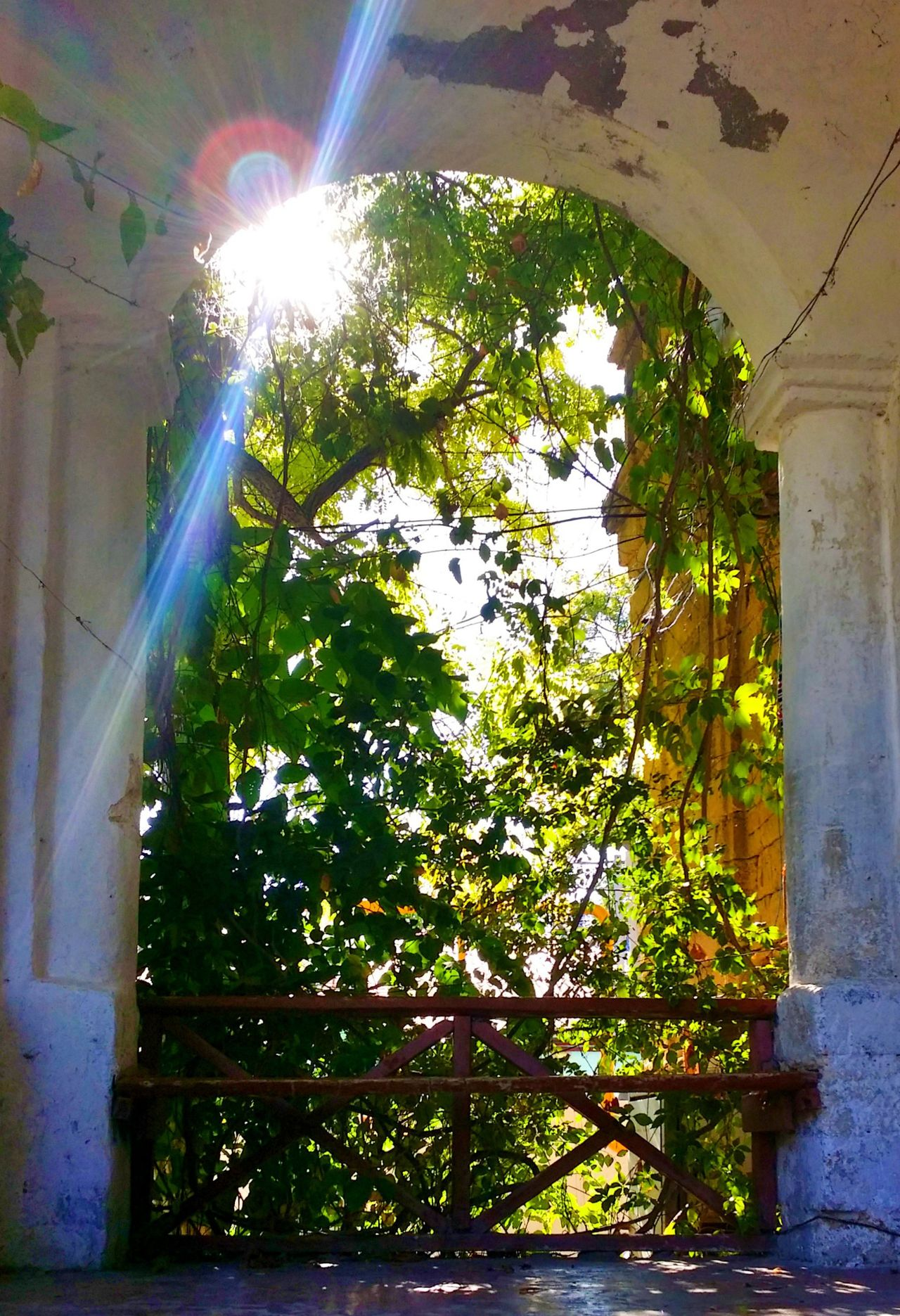 Abandoned Buildings Abandoned Abandoned Places Paint Decay Abandoned House Sunny Day Sunny Afternoon Light And Shadow Hanging Out Essence Of Summer Enjoying Life No People EyeEm Gallery Walking Around Check This Out Ray Rays Of Sunshine Ray Of Light Arch