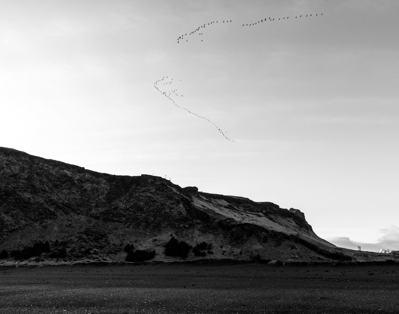 V for Vendible. Sky Landscape Nature Mountain Beauty In Nature Tranquility Outdoors Animal Themes Bird In Formation Formation Formation Flying Birds Iceland Memories Iceland_collection Iceland Iceland Trip Blackandwhite Black And White Black & White Traveling Travel Photography Roadtrip Vik Travel Destinations