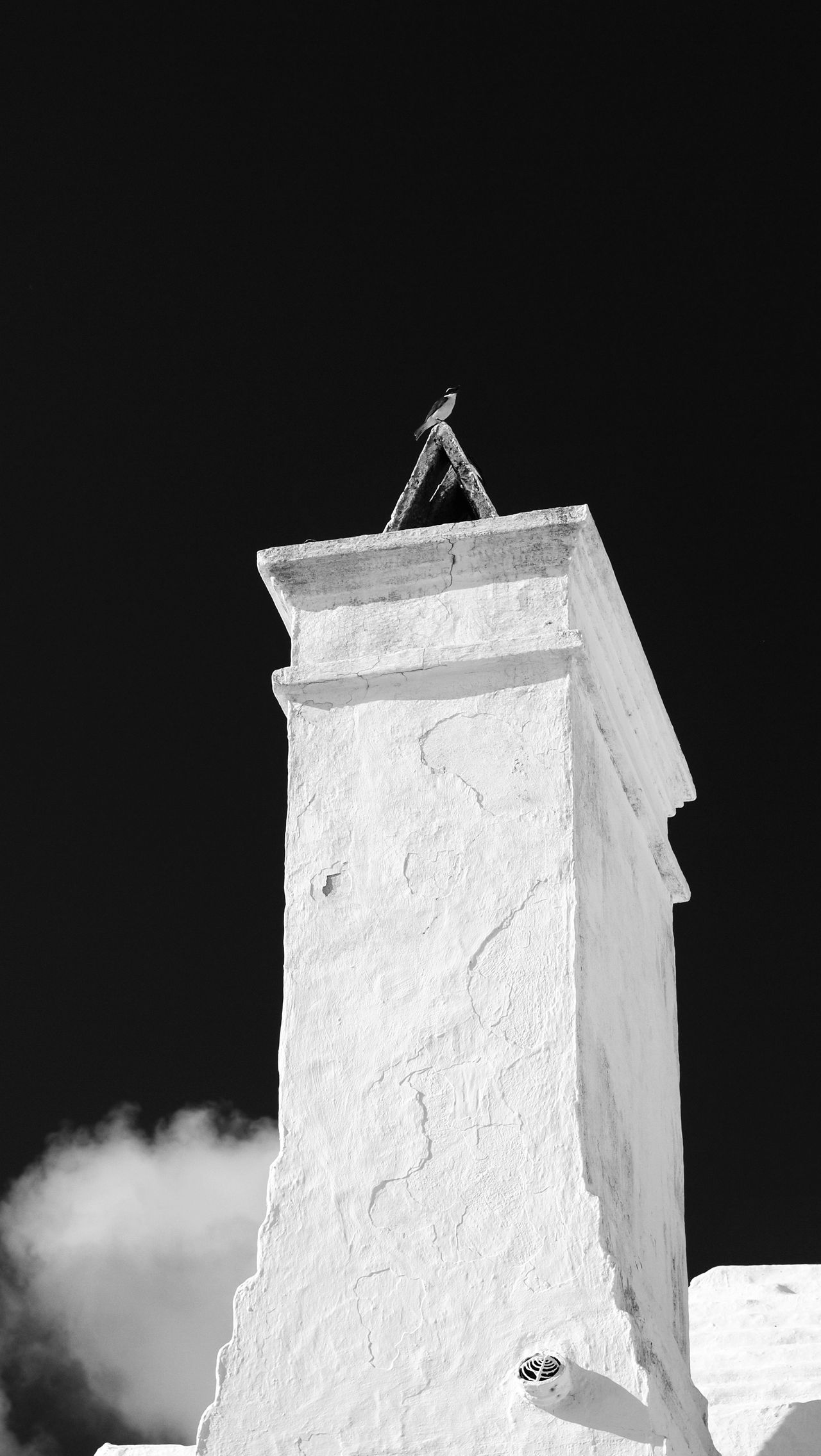 Animal Themes Architecture Background Backgrounds Bermuda Bird Birds Black & White Bradley Olson Bradleywarren Photography Built Structure Chimney City Copy Space Day Looking Up Low Angle View No People Outdoors Perching Room For Text Sky Tower White White Color