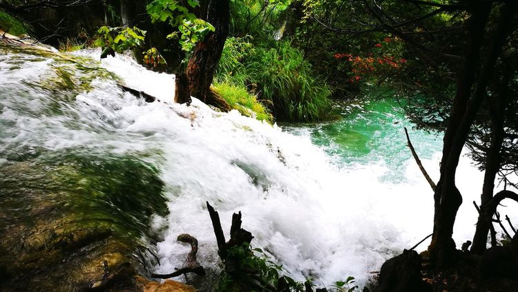Tree Motion Nature Water Beauty In Nature Waterfall Long Exposure Outdoors Forest Day Adventure No People Freshness Sky Power In Nature