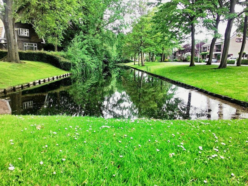 Dutch Canals Dutch Landscape Dutch Nature Dutch Countryside Dutch