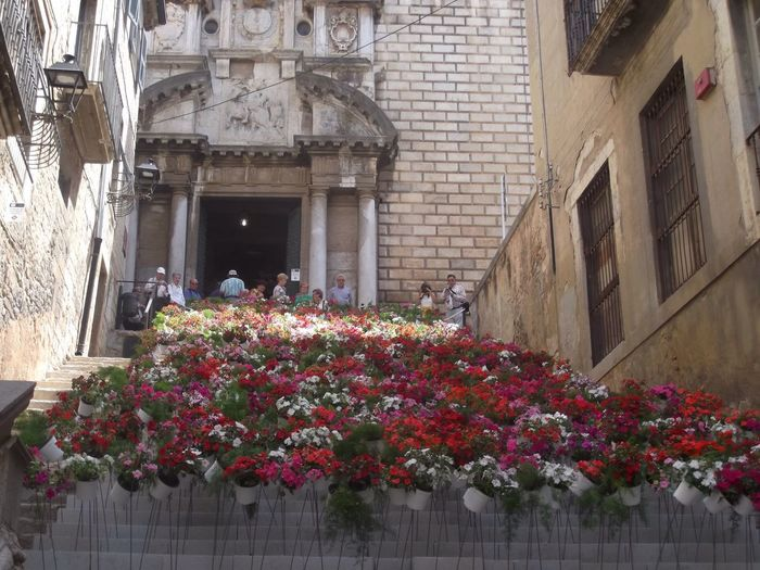 Girona Temps De Flors 2015