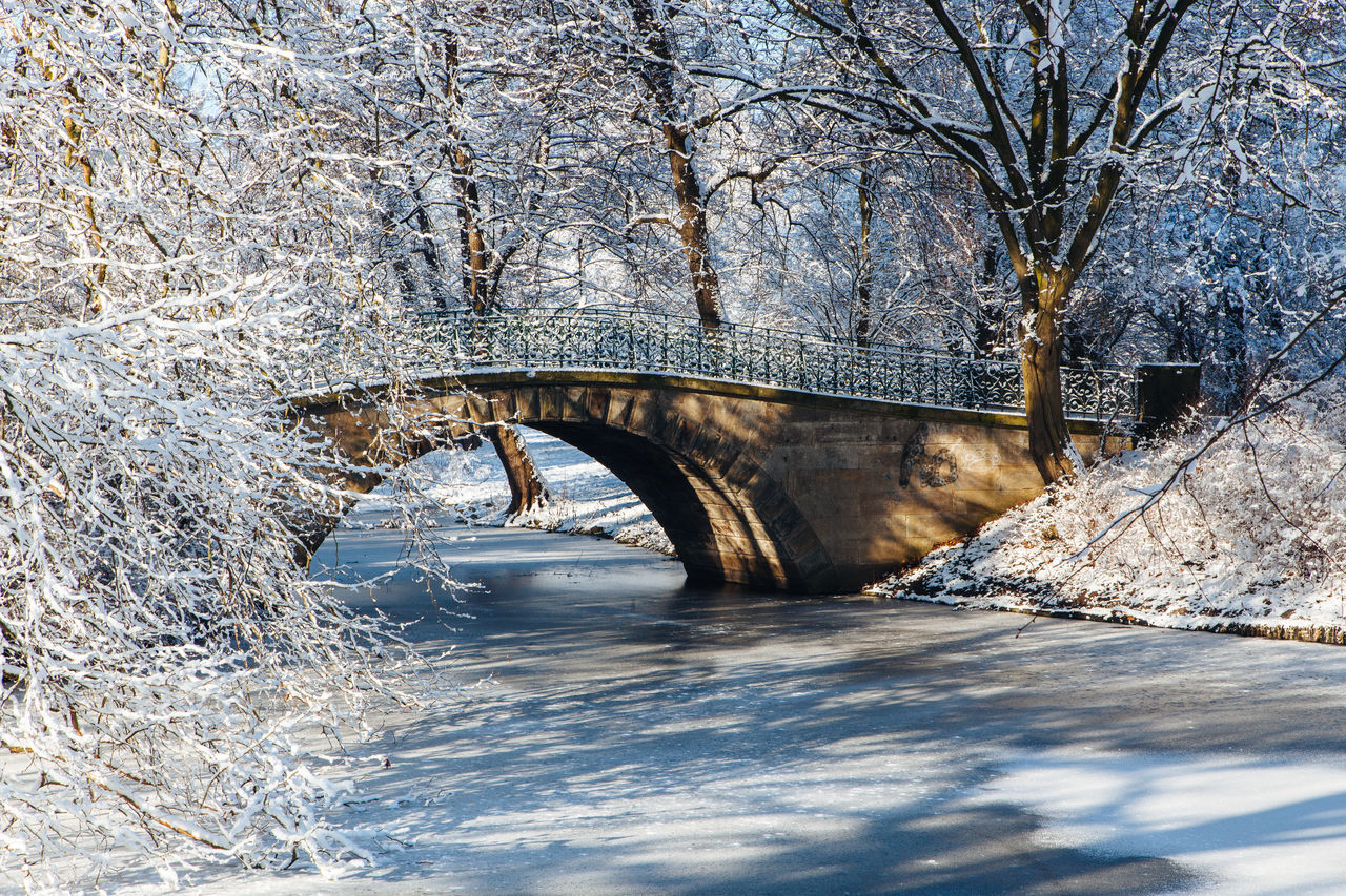 Small Bridge - Georgengarten, Hannover Arch Arch Bridge Architecture Bare Tree Bridge Bridge - Man Made Structure Built Structure Cold Day Frozen Frozen Lake Frozen Water Nature No People Outdoors Sky Snow Snow Covered Snow On Trees Snow Trees The Way Forward Tranquil Scene Tranquility Tree Winter