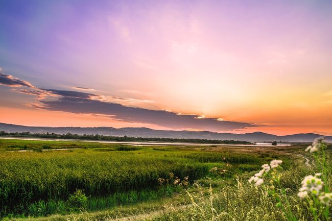 Sweet child of mine. Sunset Nature Beauty In Nature Landscape Sky Grass Green Color Cloud - Sky Sunset #sun #clouds #skylovers #sky #nature #beautifulinnature #naturalbeauty #photography #landscape