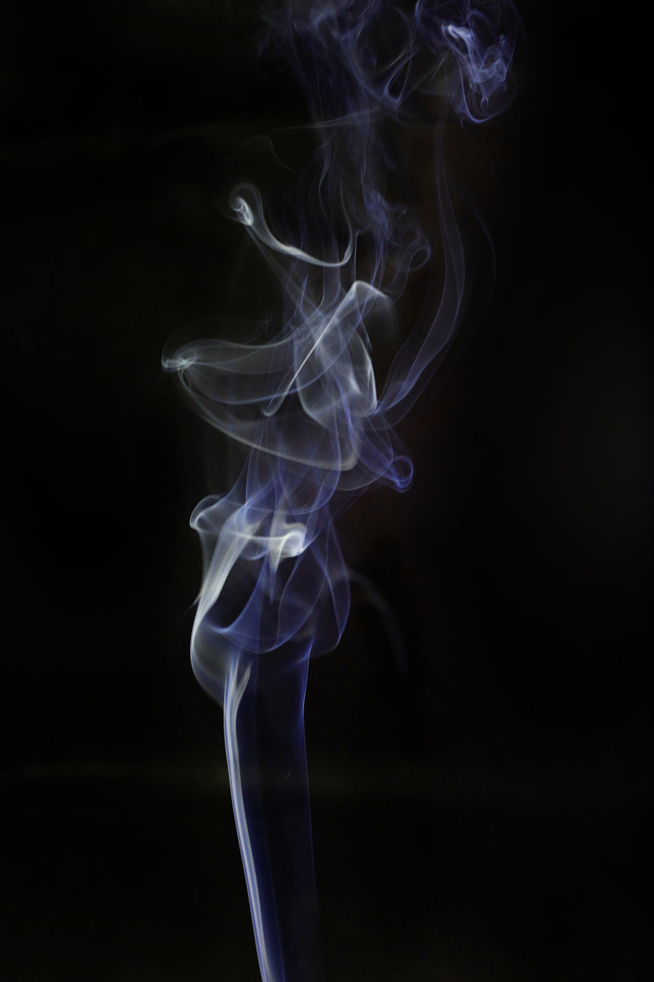 Abstract art. Color white blue smoke from the aromatic sticks on a black background. Background for Halloween. Texture fog. Design element. The concept of aromatherapy. Abstract Air Background Backgrounds Black Background Close-up Curve Fragility Gas Mist Motion No People S Smile Smoke - Physical Structure Studio Shot Swirl Thick Unhealthy Eating Wave