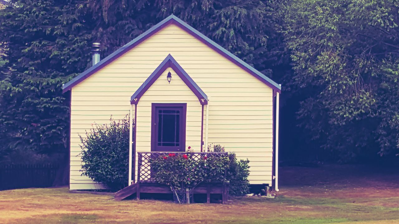 house, tree, plant, no people, outdoors, architecture, built structure, growth, day, building exterior, nature