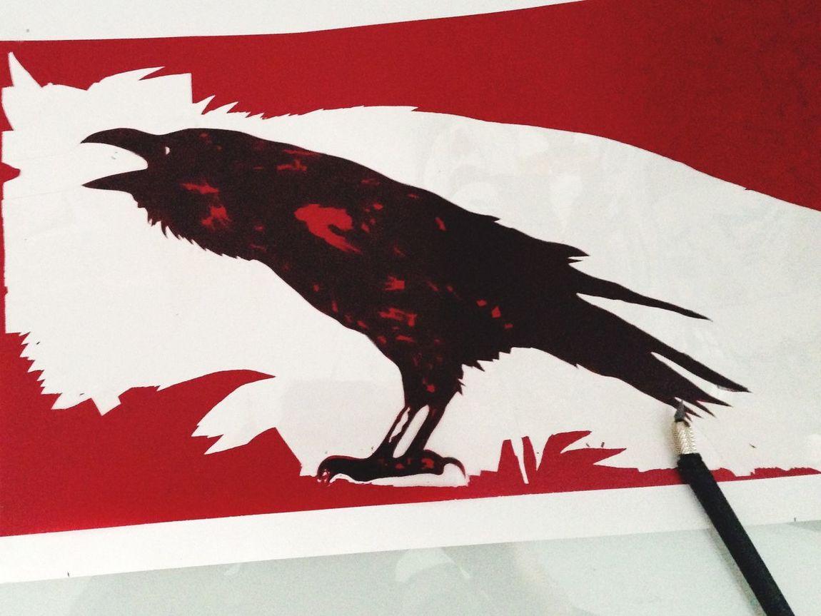 Siebdruck Schablone Rabe Raven Grafik