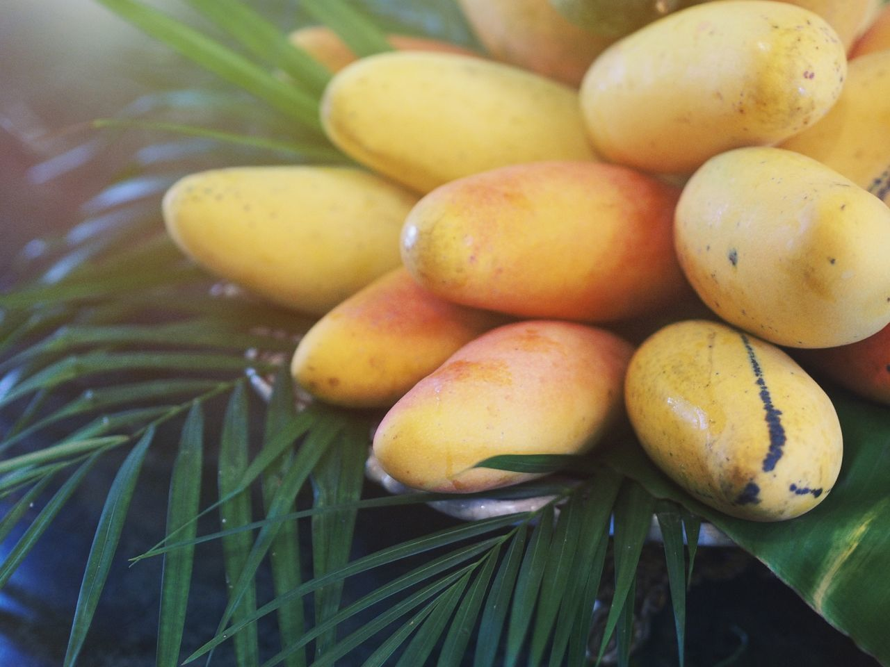 No People Food And Drink Food Close-up Freshness Indoors  Day Nature Fruit Photography Fruits ♡ Mango Mangoes Beauty In Nature Nature EyeEm Selects
