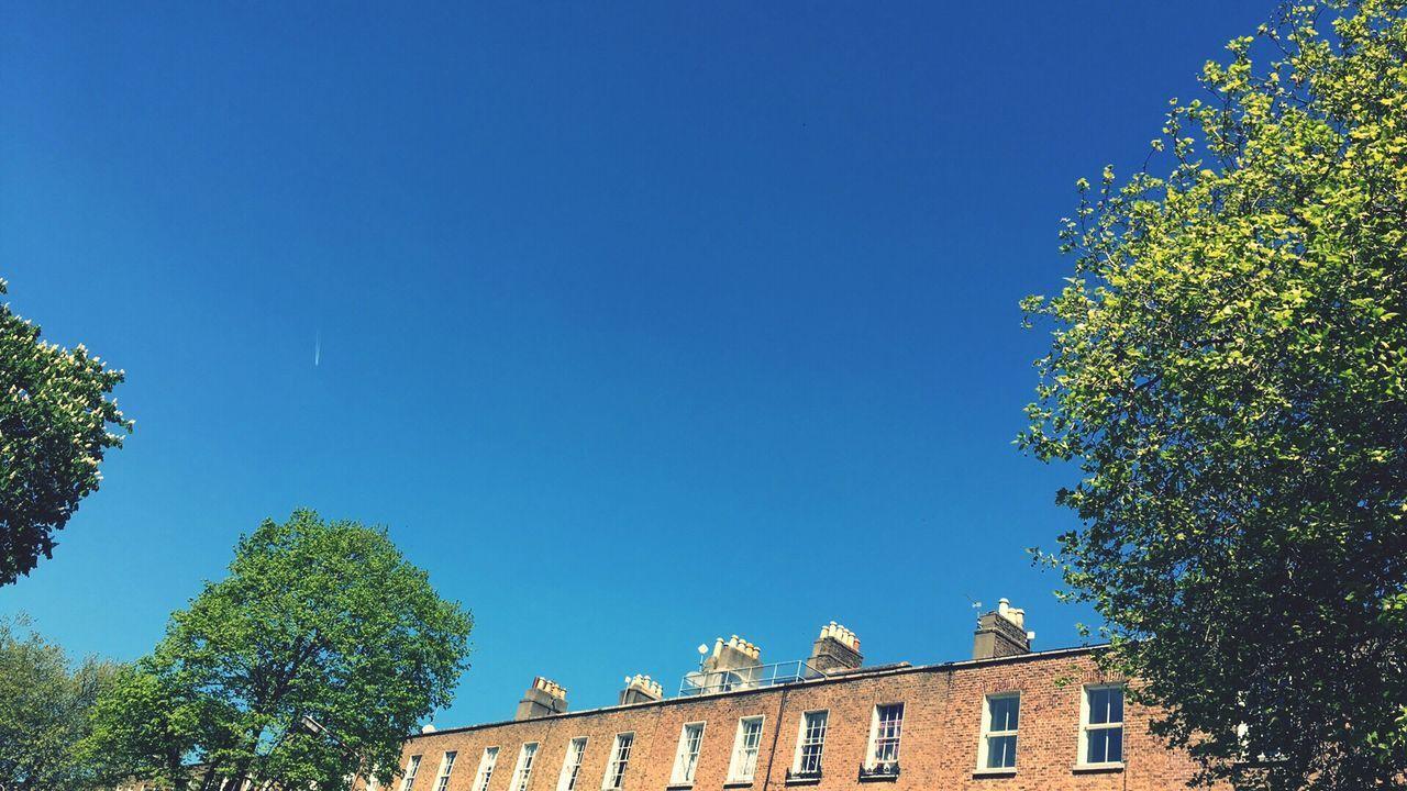 Look up blue sky