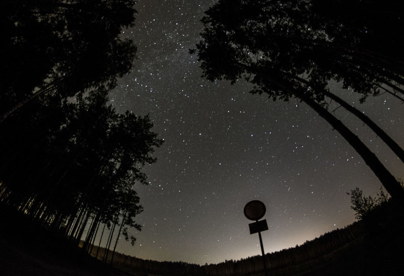 Astronomy Constellation Czerwiensk Galaxy Nature Night No People Outdoors Poland Sky Space Space And Astronomy Star - Space Tree