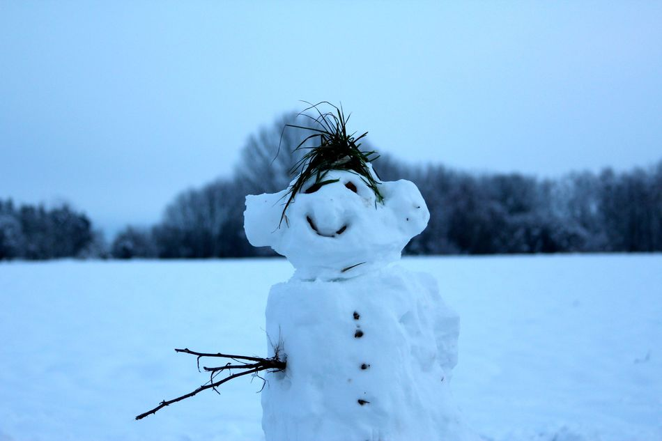 Beautiful stock photos of snowman, Close-Up, Day, Focus On Foreground, Human Representation