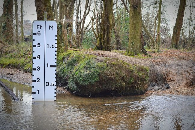 Ford Drive Thru Water Level Water Level Indicator Stream Shallow Water Country Road Roadside Countryside Muddy Waters Muddy Water Ripples Flowing Water Flowing Stream Winter Trees Winter Time Nature Nature Photography EyeEm Nature Lover United Kingdom Nikon D3200