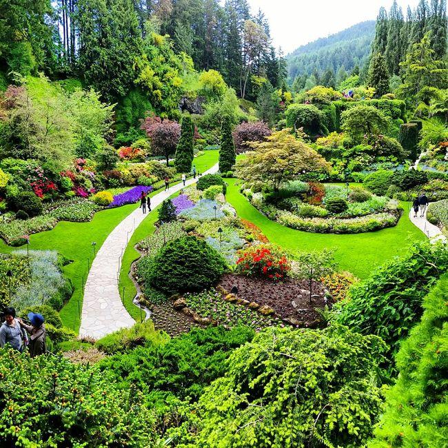 Buchart Garden Vancouver Island Canada Garden Walk Beautiful Place