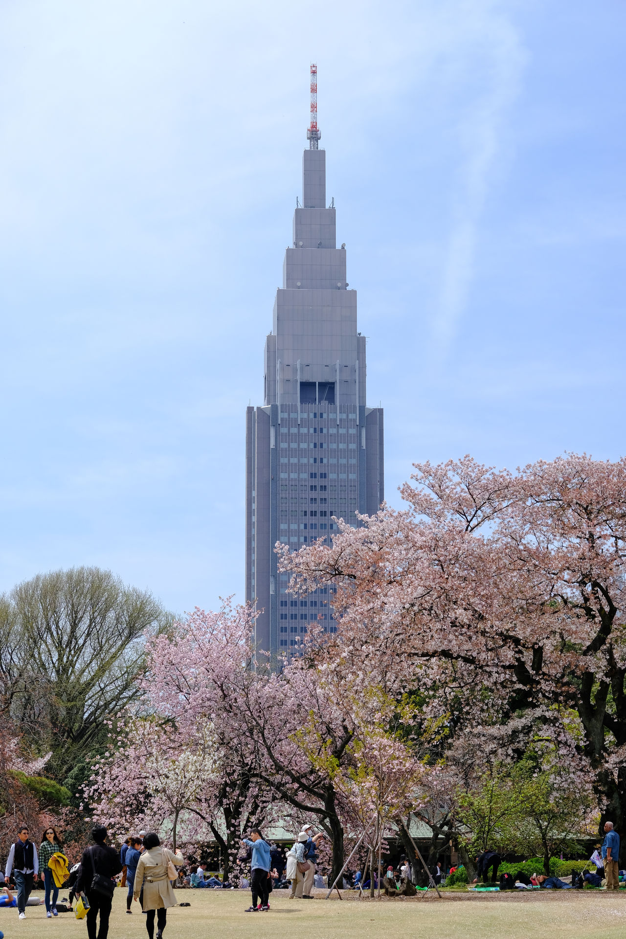 Architecture Building Exterior Built Structure Cherry Blossoms Cherry-blossom Viewing City City Life Famous Place Large Group Of People Lifestyles Men Modern Person Shinjuku Gyoen National Garden SHINJYUKU Sky Skyscraper Tall - High Tourism Tower Travel Travel Destinations Tree
