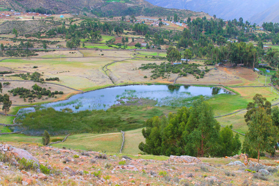 Photography taking by fisherparian in Huanca Sancos Green Huanca Sancos, Landscape Nature Photo Plants Town Wildlife World