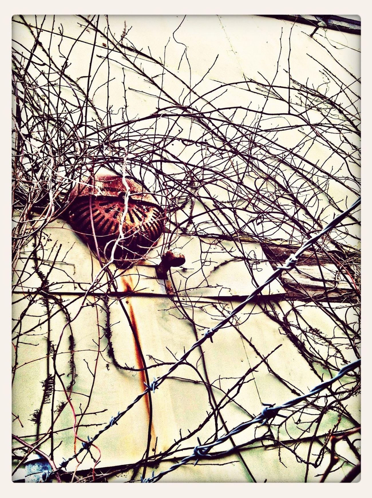Streetphotography Abandoned Urban Exploration AMPt - Abandon