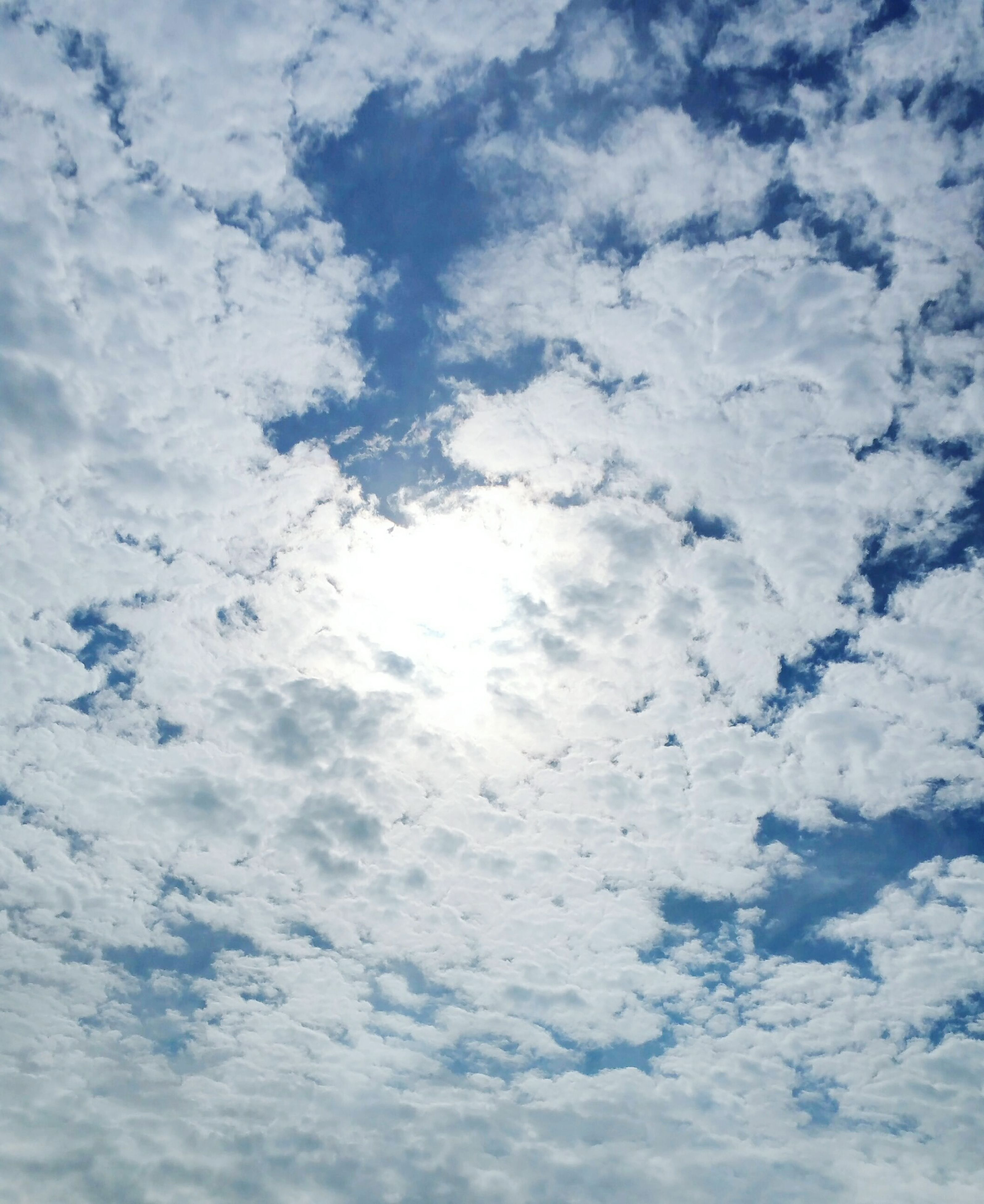 sky, cloud - sky, low angle view, beauty in nature, cloudy, tranquility, scenics, nature, white color, sky only, tranquil scene, backgrounds, weather, full frame, cloudscape, cloud, blue, idyllic, white, day