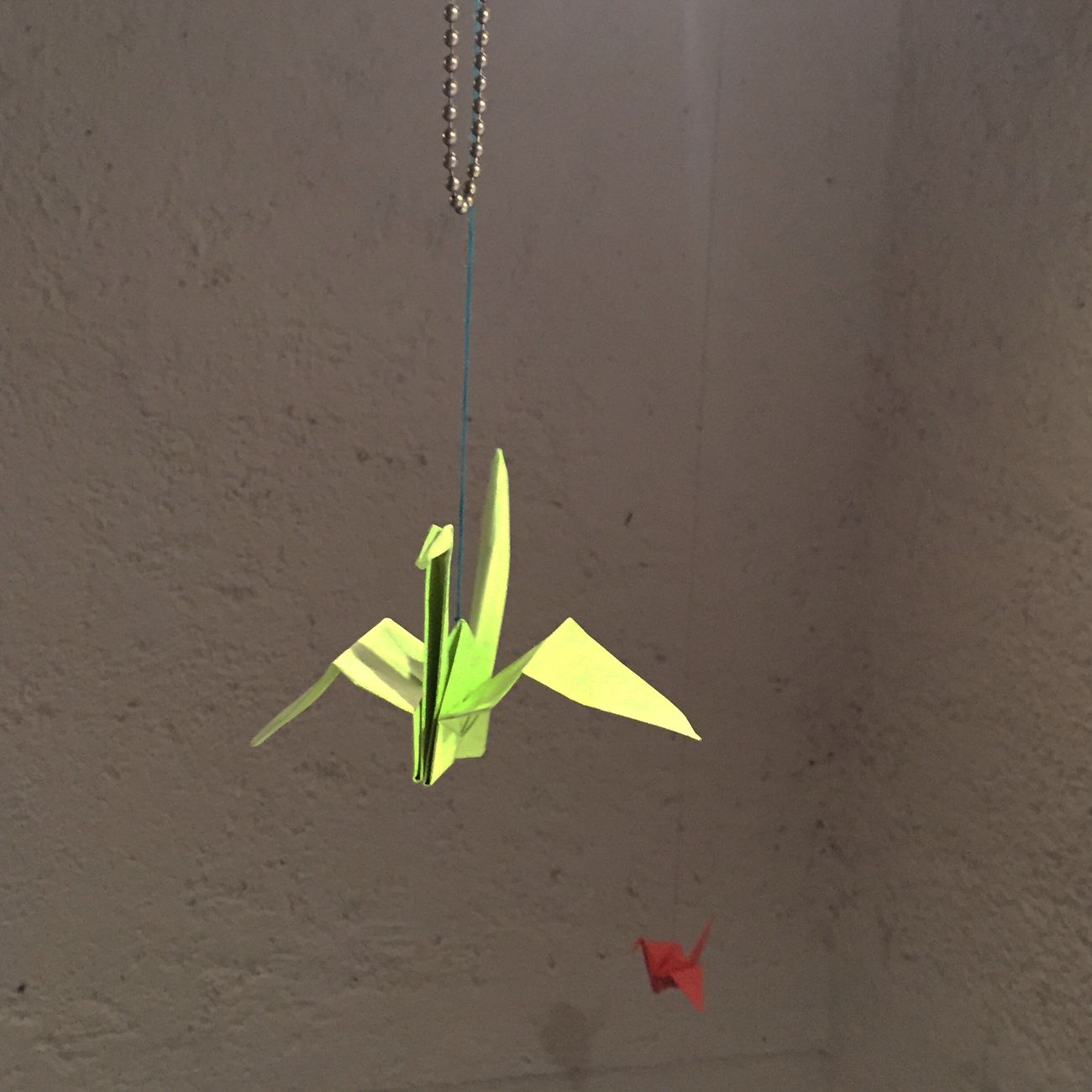 Love Light Hello World Decoration Decorating Happiness Hogar Dulce Hogar.. New Place New House Home Sweet Home In Progress  New Home Home Having Fun Gratitude Relaxing Enjoying Life FamilyLove Vibrant Color Grulla Origami