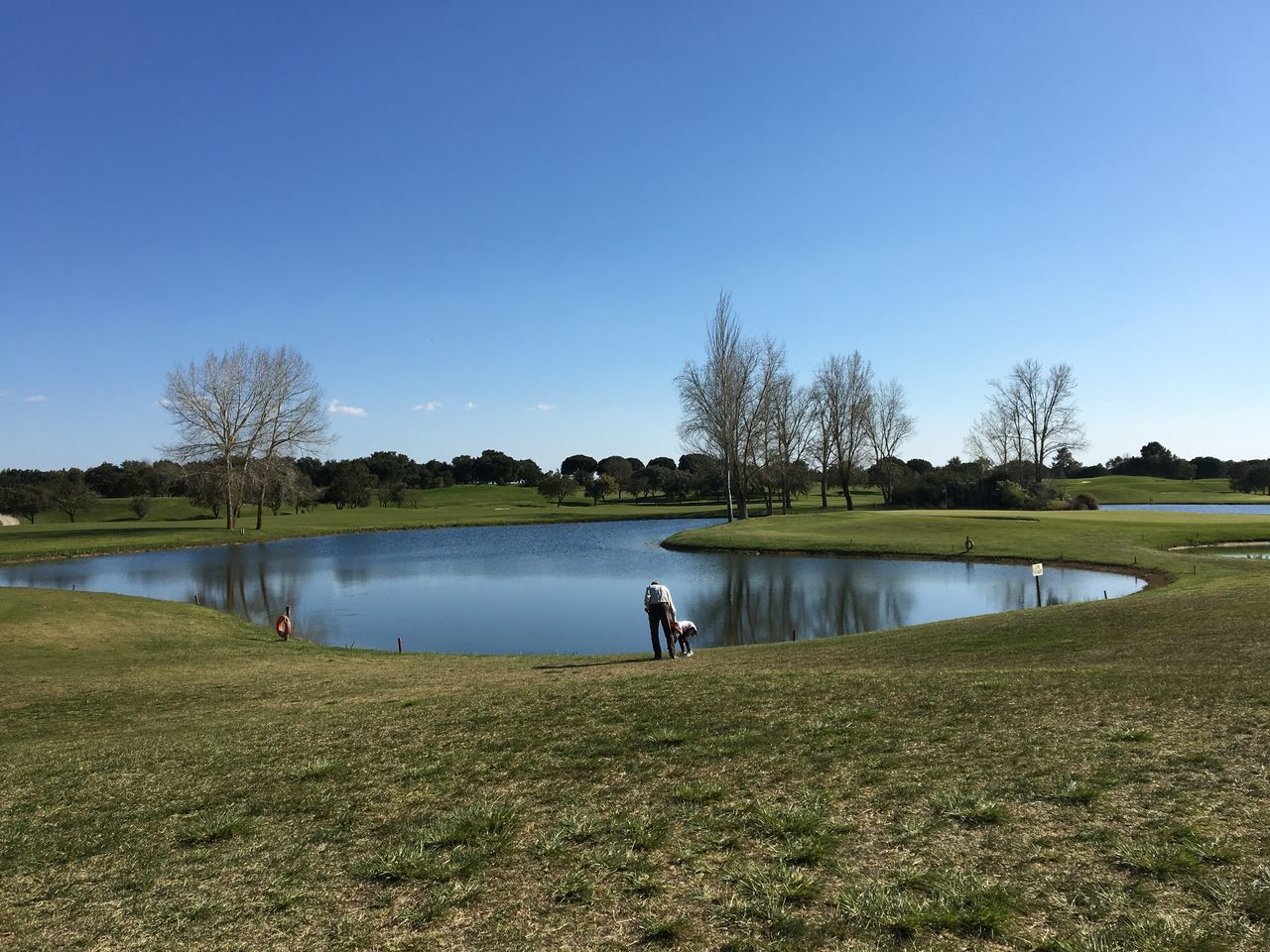 Adult Blue Clear Sky Day Full Length Golf Golf Club Golf Course Golfer Grass Green - Golf Course Lake Leisure Activity Men Nature One Person Outdoors People Relaxation Sport Standing Tranquil Scene Tranquility Tree Water