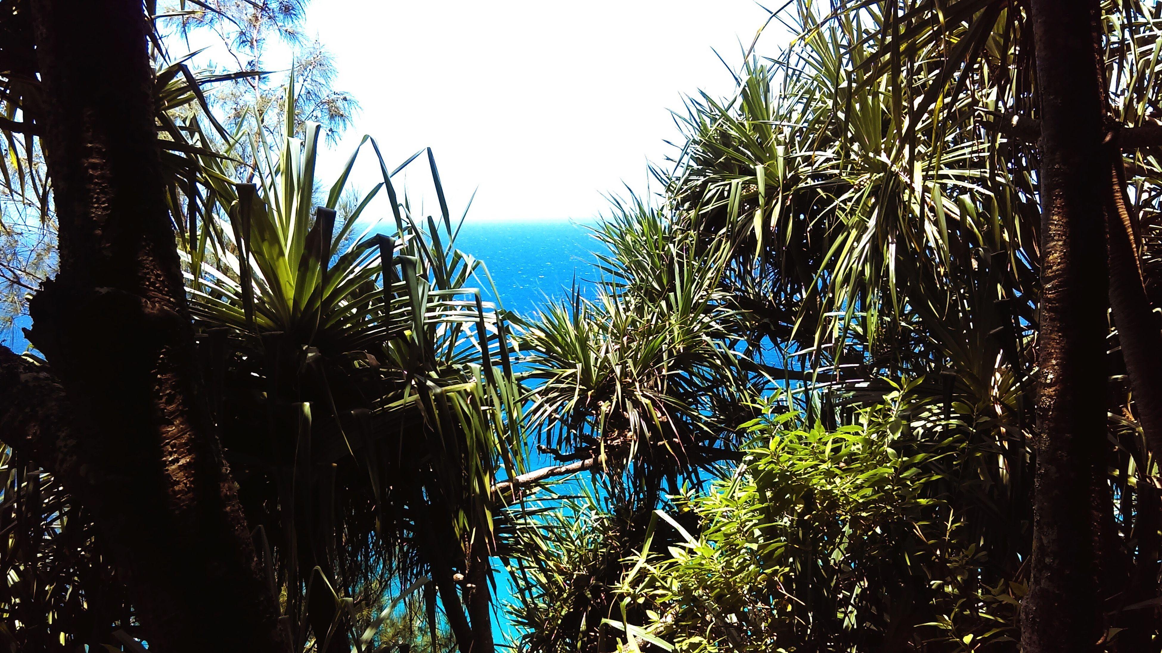 My Favorite Place Hawaii Napali Coast Ocean