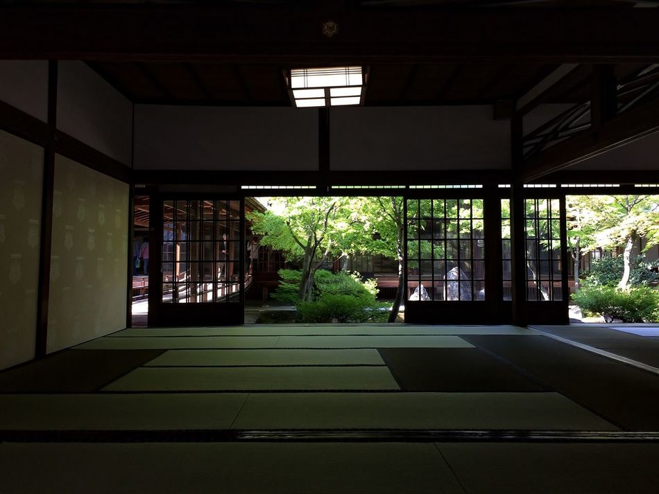 Beautiful stock photos of tokyo, Architecture, Courtyard, Day, Growth
