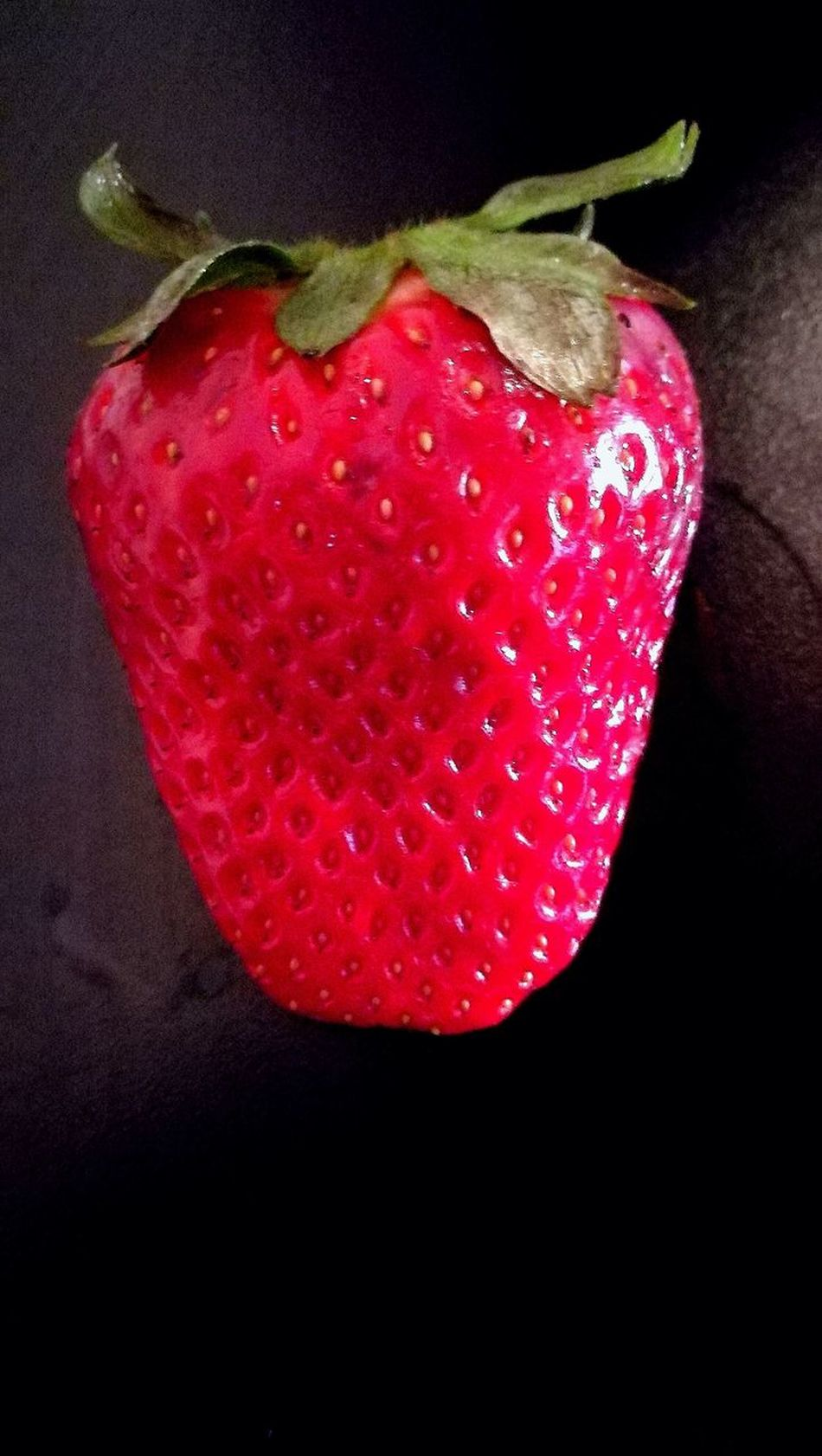 EyeEmNewHere Strawberry EyeEmNewHere EyeEm Diversity Nature Evergreen Lizard Nature
