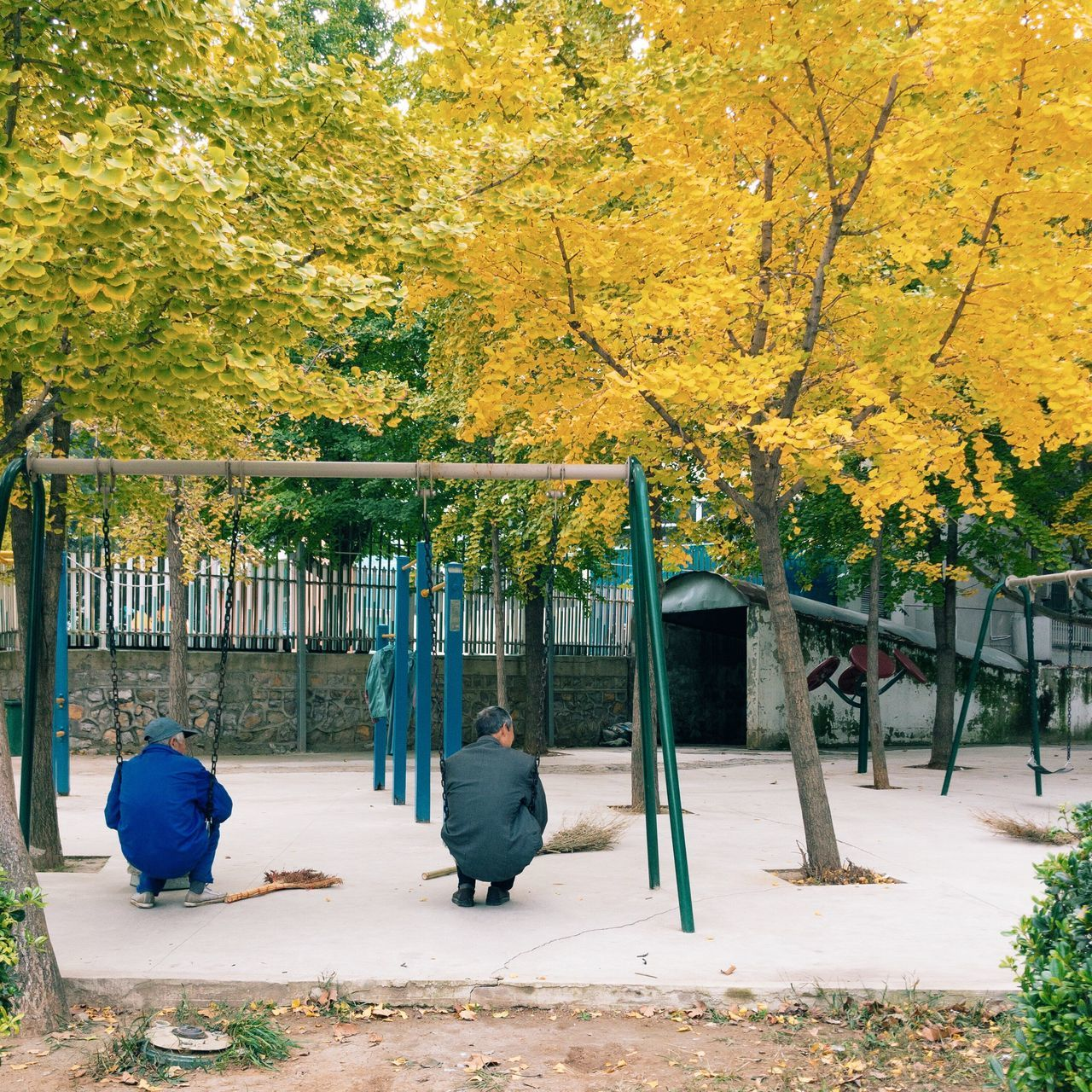 Tree full length Autumn leaf outdoors lifestyles men Adult day people building exterior Architecture Nature Adults Only