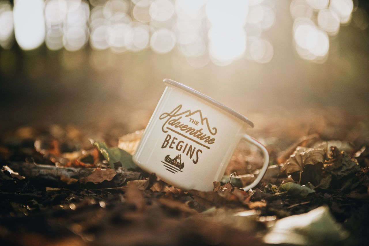 """An enamel mug with the quote """"Let the adventure begin"""" printed on it rest in autumn leaves in the forrest. Adventure Quote Autumn Autumn Colors Autumn Leaves Adventure Autumn Sunlight Close-up Enamel Mug Forrest Leaf Let The Adventure Begin No People Outdoors"""