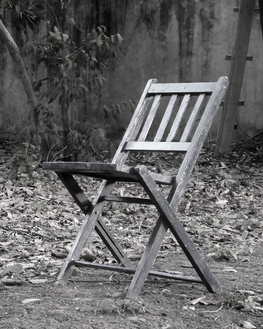 chair, no people, day, outdoors, folding chair, grass, nature
