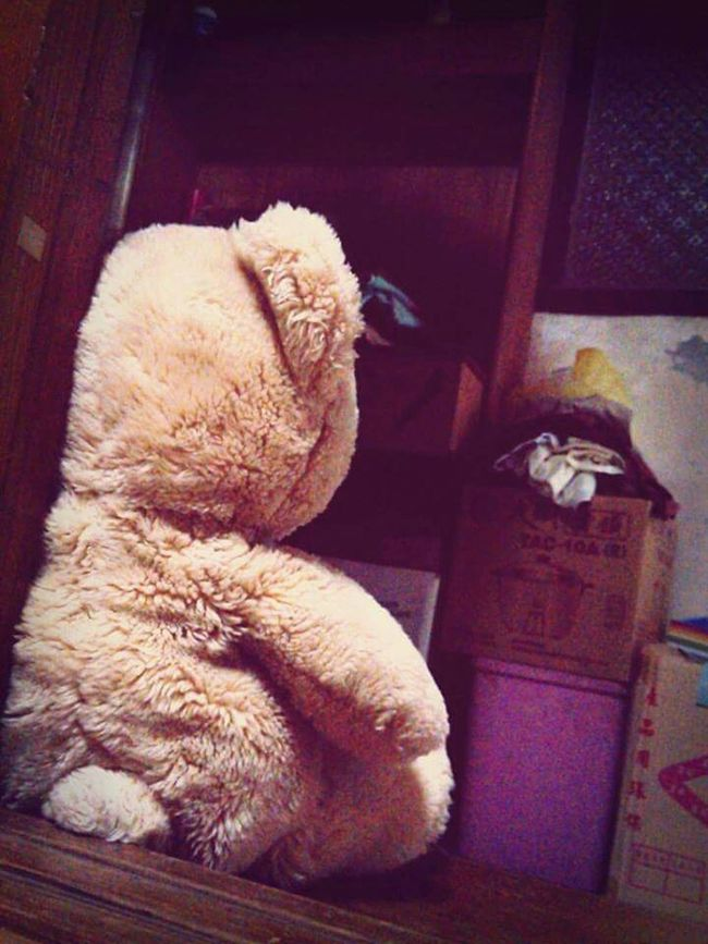 friday noght, waiting for my boss coming home. A_Ruang Bear Cute Doll Fridaynight Waiting My Boss Home Sweet Home Holiday Expectation
