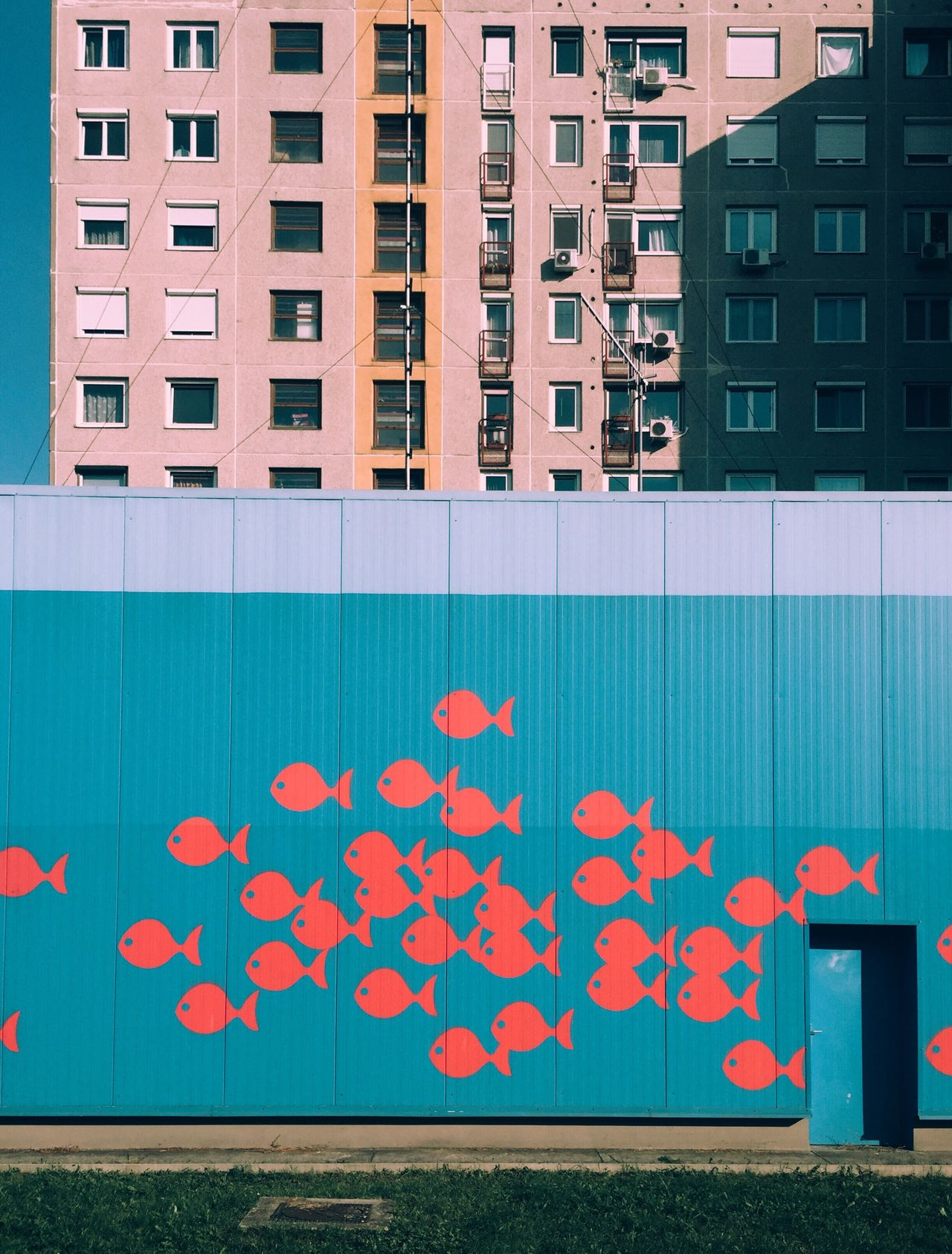 Architecture Building Exterior Built Structure Pink Color Flower City Exterior Day Outdoors Petal No People Multi Colored Waterfront Office Building Geometric Shape Green Color Colorful City Life Freshness Fish