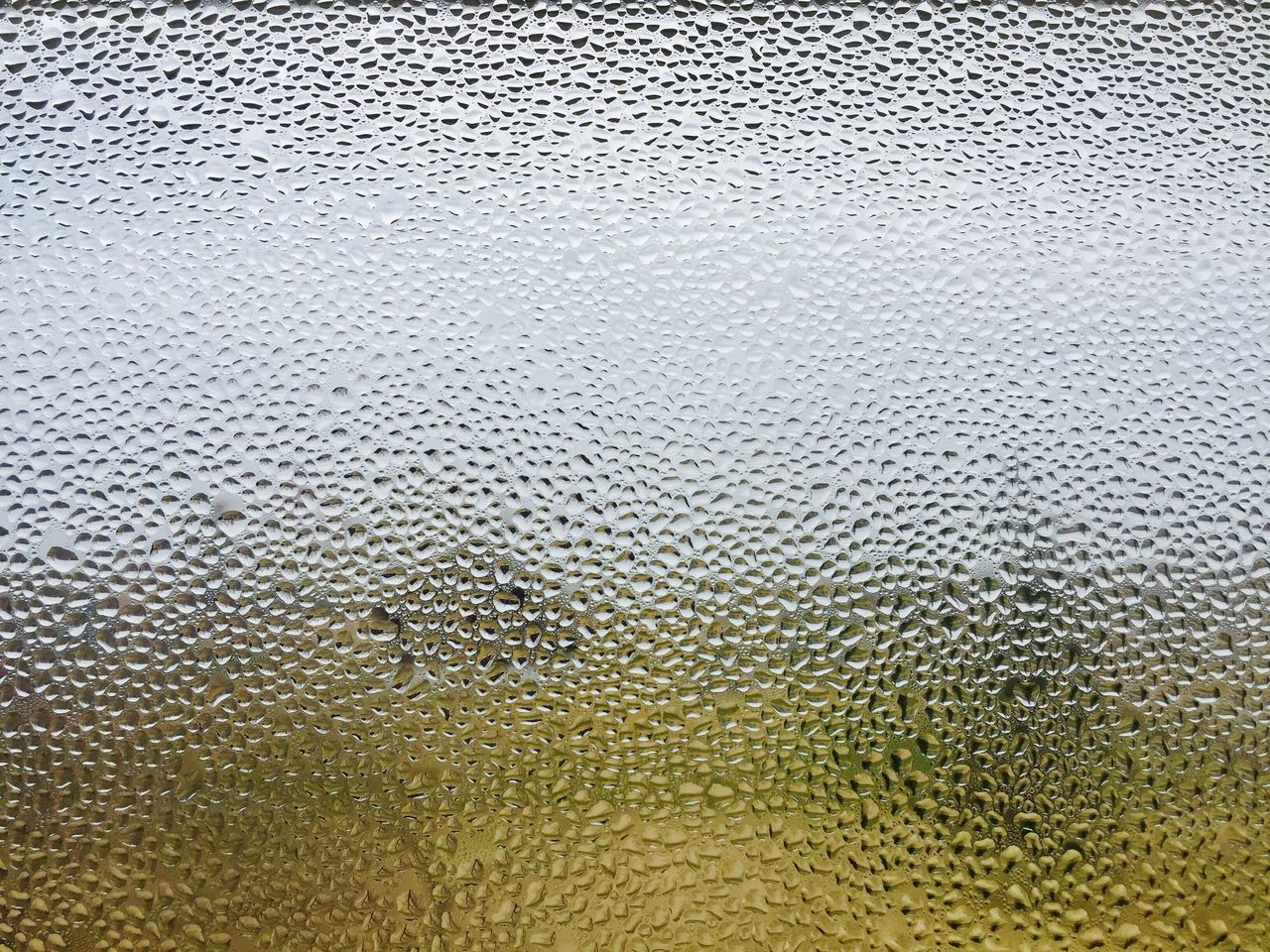 Day Close-up No People Indoors  Water Reflection Window Window View Dew Dew Drops Dewdrops_Beauty
