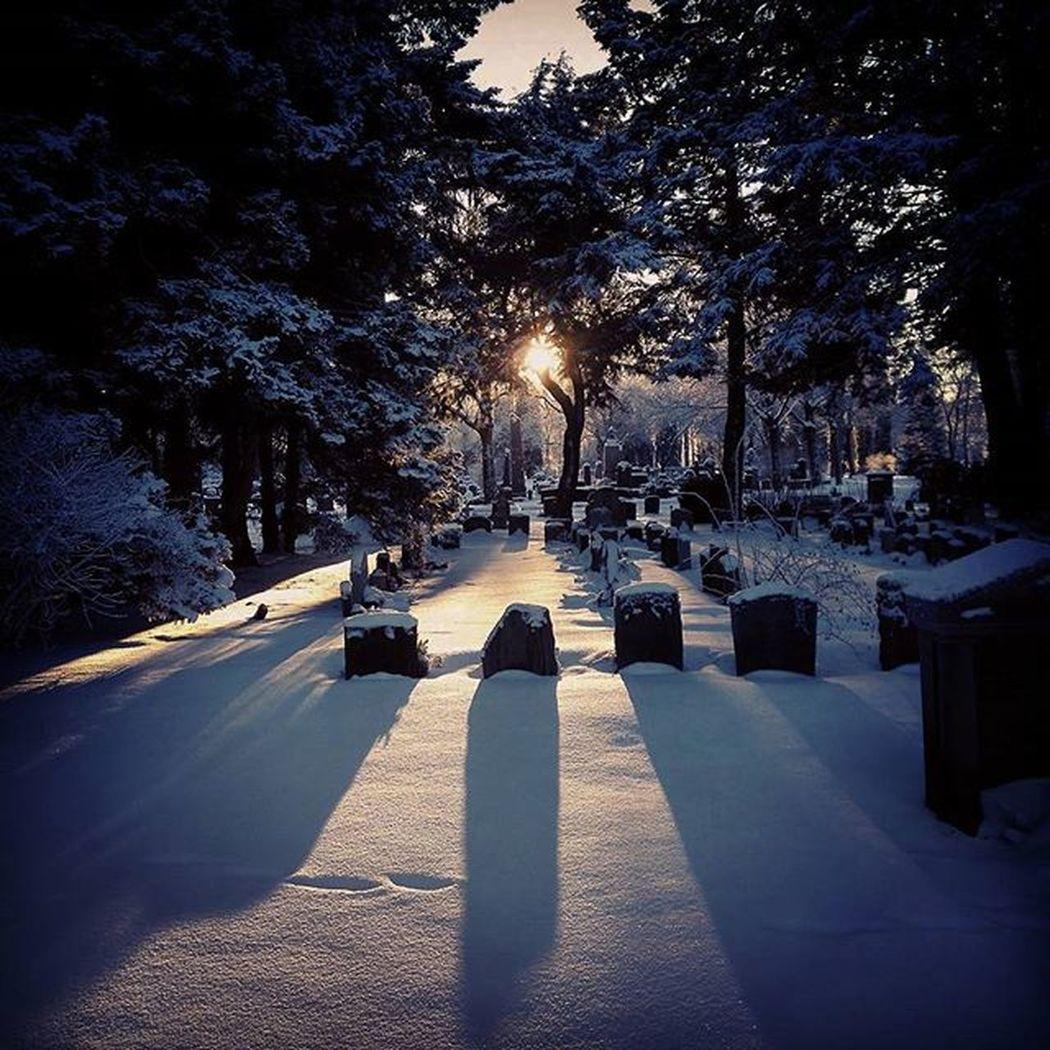 Sunset Winter Graveyard Peace Oslo Norway Oslobilder Vestregravlund Gravferdsetaten Cemetery Shadow Mittoslo