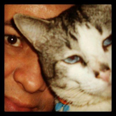 Eu e gato Romão...