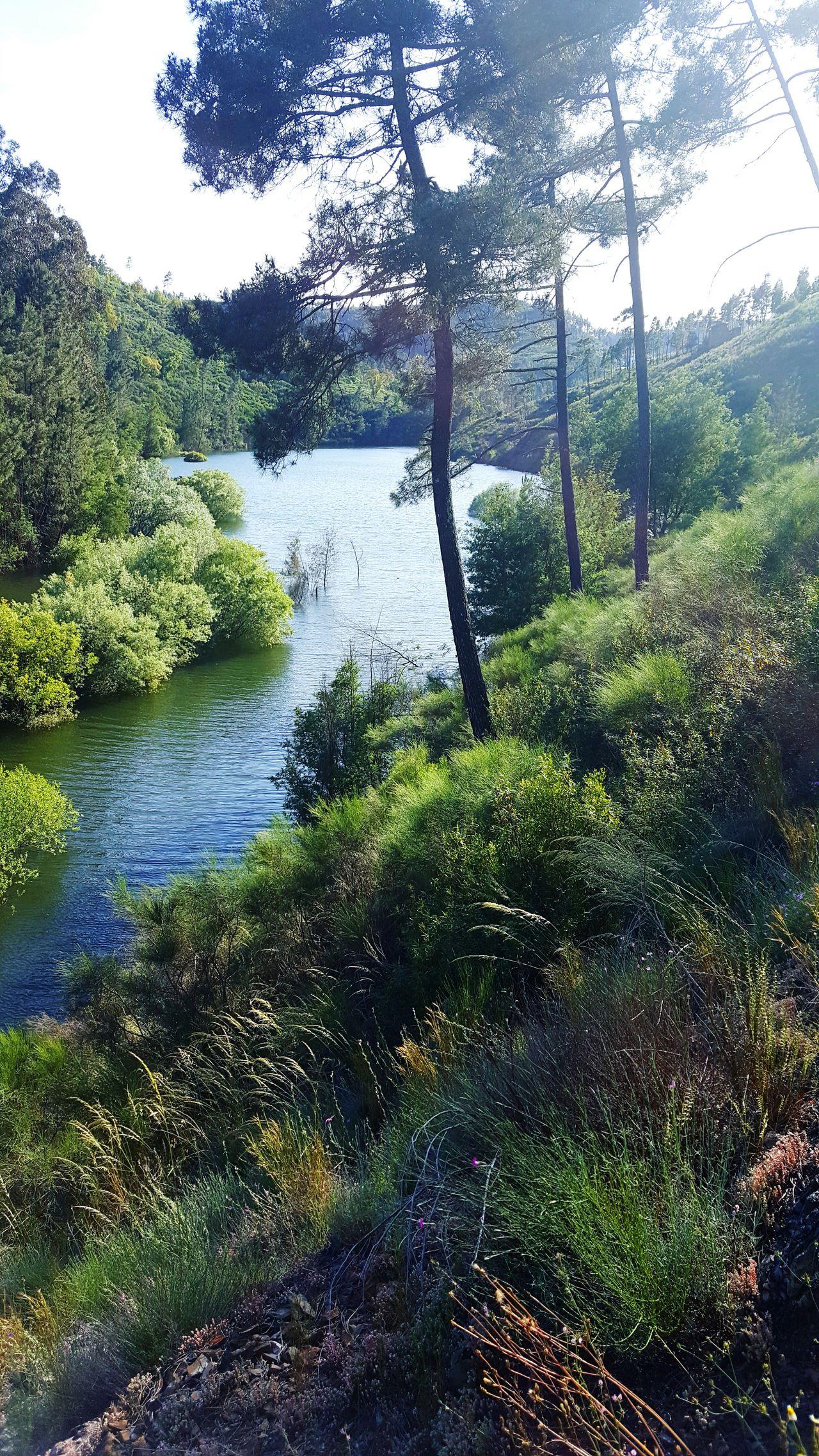 Paisagem Natureza🍁 Natureza 🐦🌳 Monte Valley River Barragemcastelodobode Water Barragensdeportugal Rio