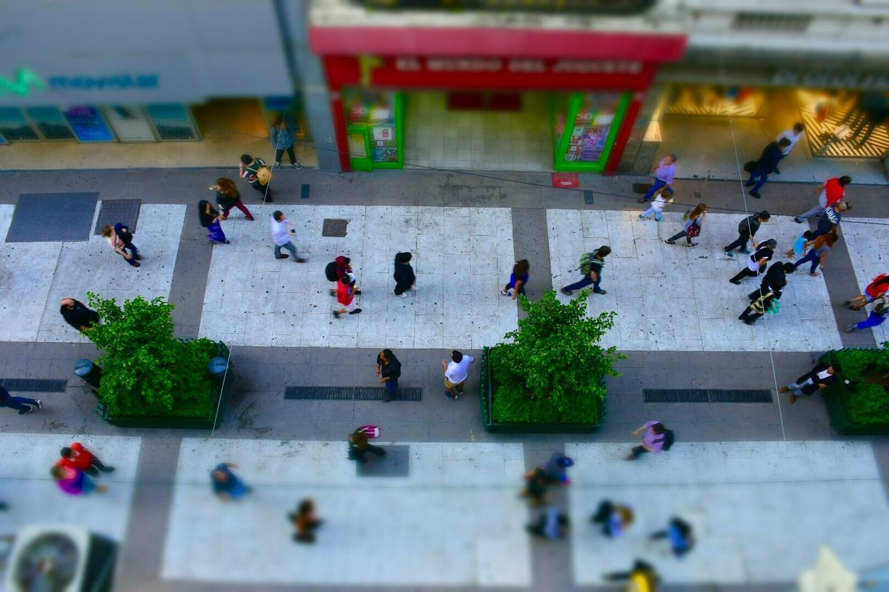 Tiltshift Florida Calle Florida Buenos Aires People