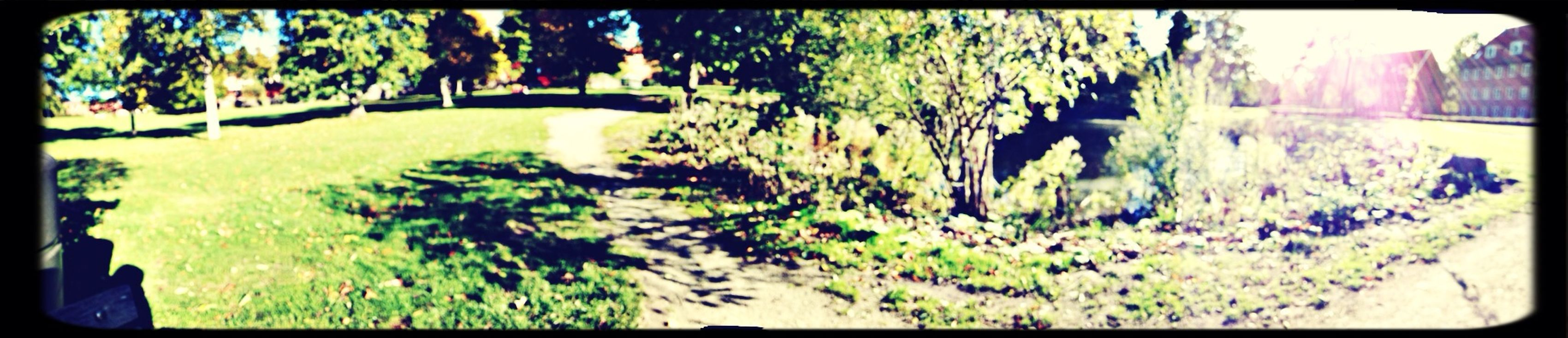 chil in one of the last summer days! :-P