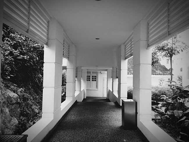 Historical Building Black And White Photography EyeEm Gallery Colonial Architecture MajesticHotel Hotel View Black & White Buildinglover