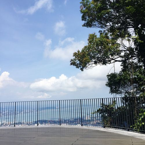 From The Rooftop View Of Penang Naturelovers Enjoying The Sun Penang