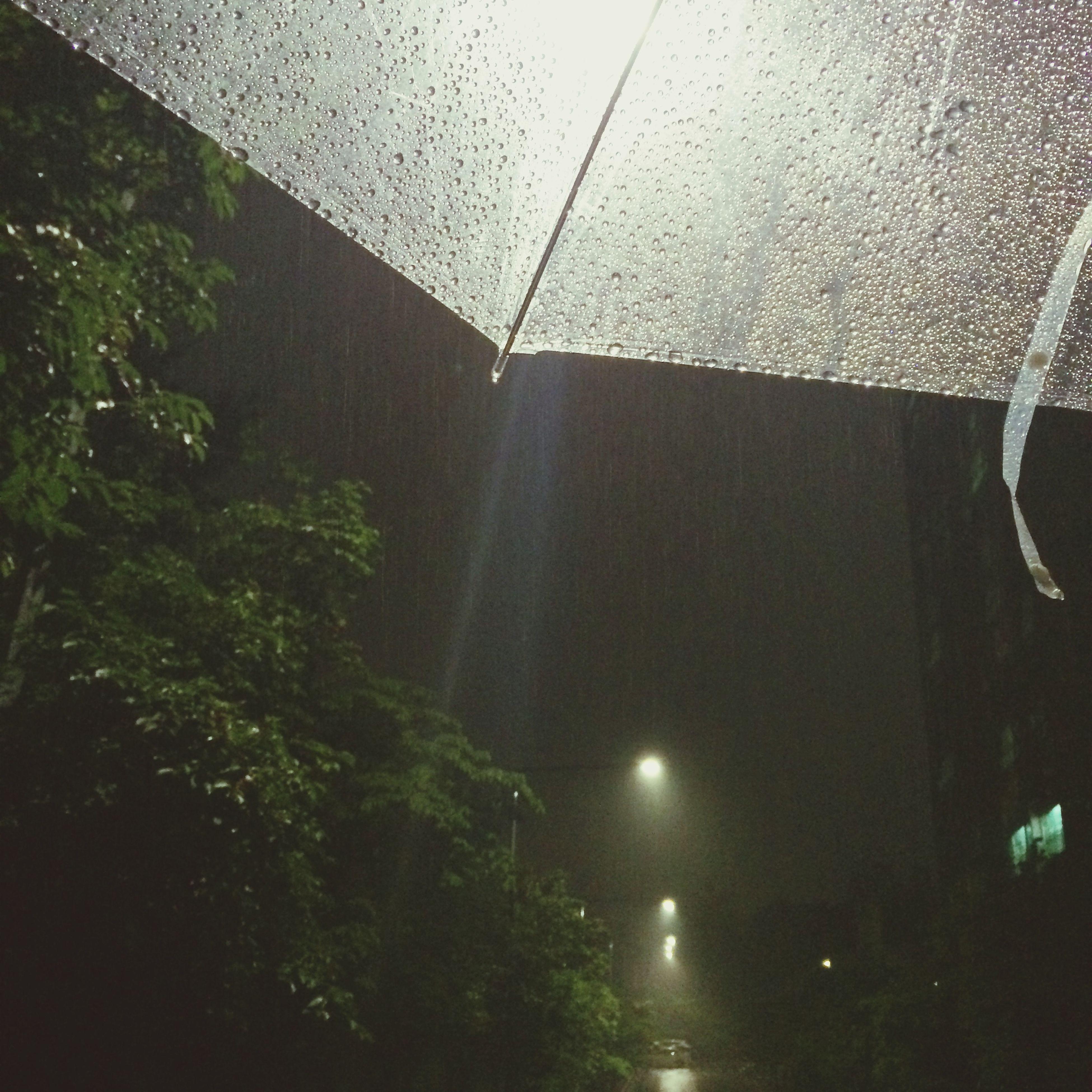 rain, wet, window, glass - material, transparent, drop, water, indoors, raindrop, weather, street, transportation, glass, tree, car, reflection, no people, monsoon, season, road