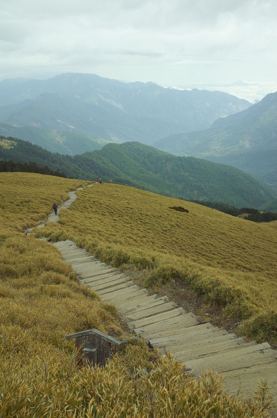 Beautiful stock photos of path, Beauty In Nature, Day, Hill, Mountain