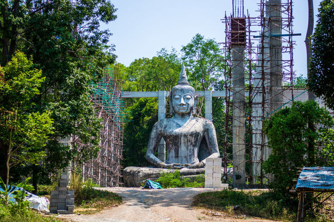 Buddha at Wat Pa Sawang Bun, Saraburi, Thailand Art Bamboo Buddha Concrete Construction Creativity Day Human Representation Monument No People Outdoors Religion Scaffolding Sculpture Spirituality Statue Stone Material Temple - Building Tourism Travel Destinations Tree
