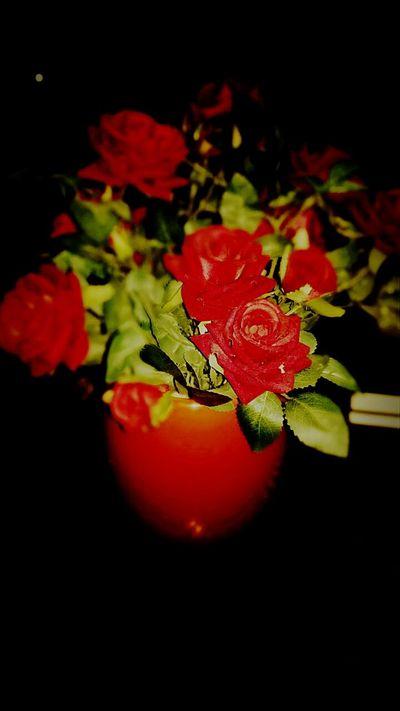 Coraçao Florido Excercising