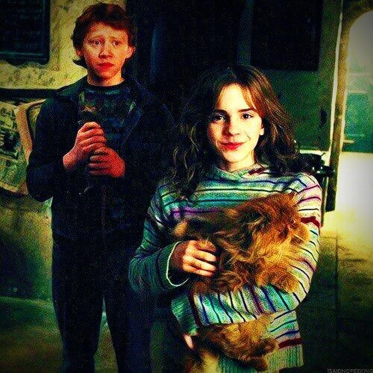 Harry Potter ⚡ Winner Winter Witcher Wich Gallery Huy Obama Trump Ebal Eball Zamudio Music Vape Gang Family ♥