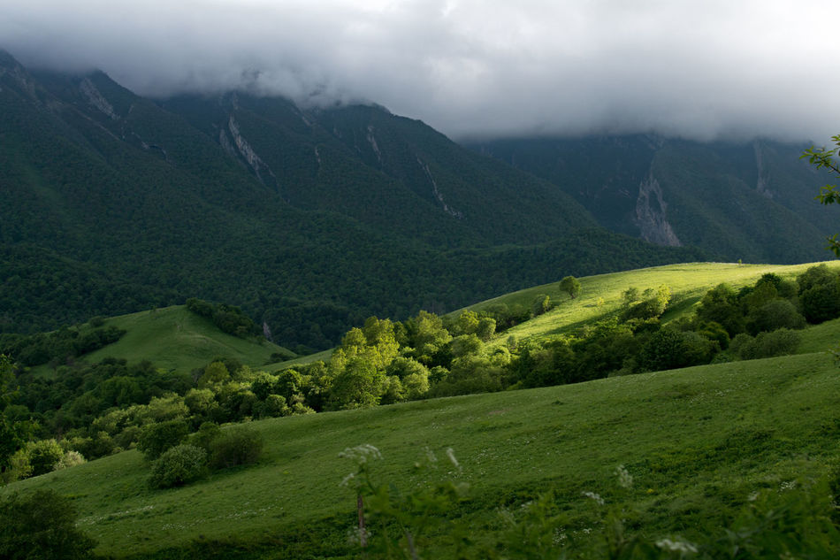 Grass Grassy Nature Koban Skyporn Ossetia Travel Photography Summer Clouds Sky Highlandcollective Mountains Hill Redditphotography Natgeolandscape Hills Travel Mountain_collection Vladikavkaz Fiagdon Landscape