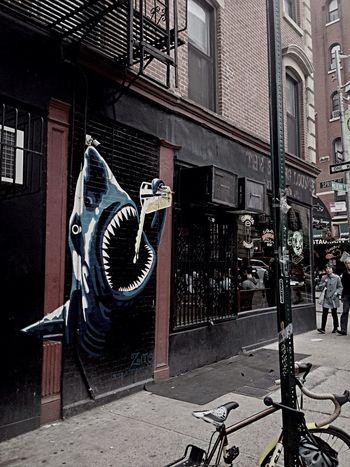 Shark Bar - shark beer